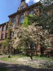 Das Athenaeum im Frühling