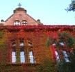 Herbstlich(t) Quelle: Athenaeum Stade Archivfoto