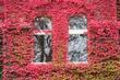 Herbst am Athe Quelle: Athenaeum Stade Archivfoto